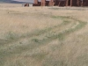 New-Mexico-7-09-066