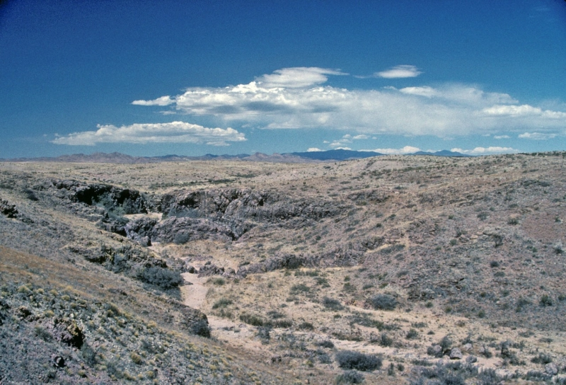Vicinity of Foster\'s Hole, southwest of Hatch, NM
